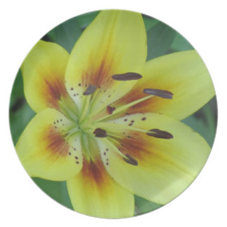 Springing into Summer Plate