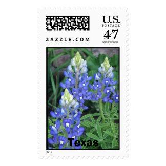 springpics 022, Texas Postage