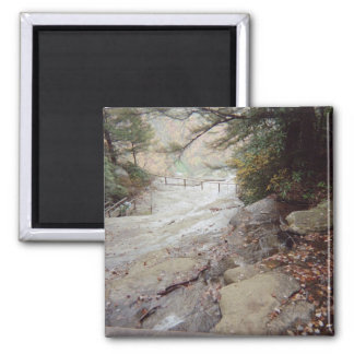 Springs At Chimney Rock 2 Inch Square Magnet