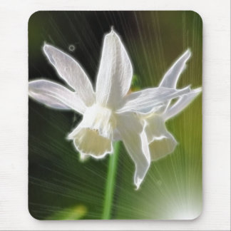 Springs Bright Stars Mouse Pad