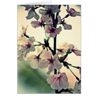 Spring's Delicate Dance (Blank Inside) Card