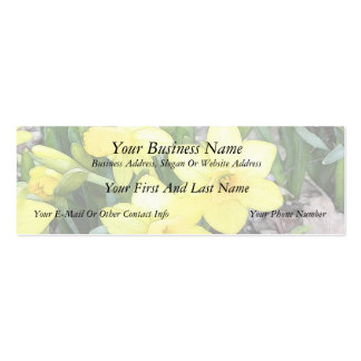Spring's First Daffodils Double-Sided Mini Business Cards (Pack Of 20)