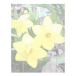Spring's First Daffodils Letterhead Template