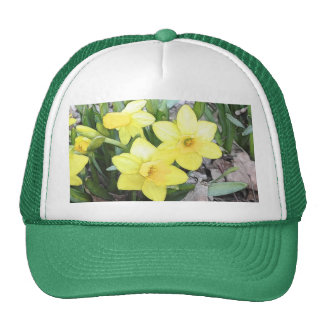 Spring's First Daffodils Trucker Hat