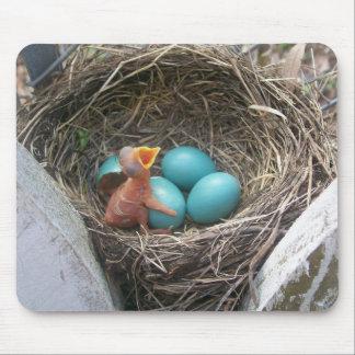 springs_new_birth_4 Mousepad