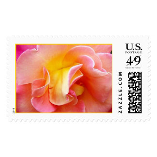 Springs Show Postage Stamp