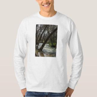 Springtime At Finley River T-Shirt