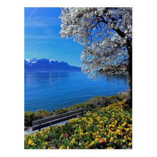 Springtime at Geneva or Leman lake, Montreux, Swit Postcard