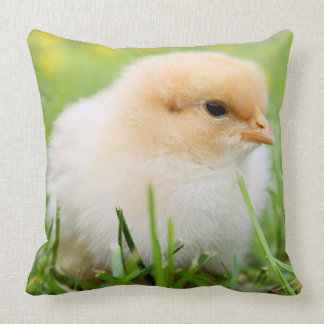 Springtime Baby Chick Throw Pillow
