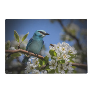 Springtime Bird On Branch Placemat