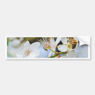 Springtime Bumper Sticker