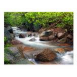 Springtime Cascade Postcard