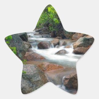 Springtime Cascade Star Sticker