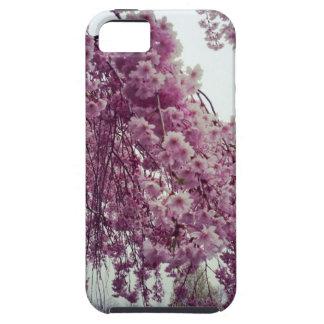 Springtime iPhone 5 Cases
