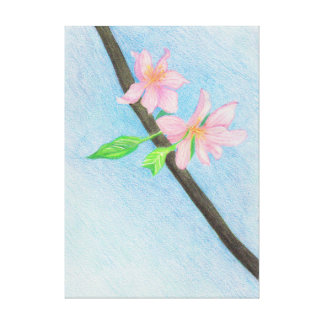 Springtime Cherry Blossoms, Colored Pencil Art Canvas Print