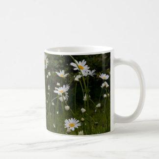 Springtime Daisies mug