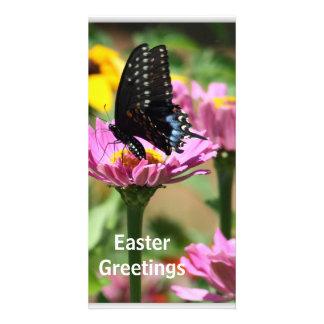 Springtime Delight Card