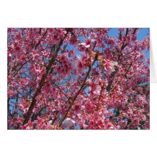 Springtime Flowering Trees CricketDiane Collection Cards