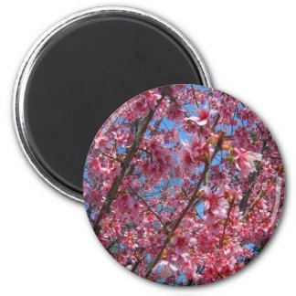 Springtime Flowering Trees CricketDiane Collection Fridge Magnets