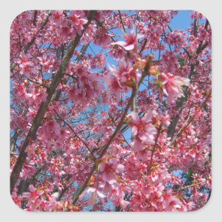 Springtime Flowering Trees CricketDiane Collection Square Sticker