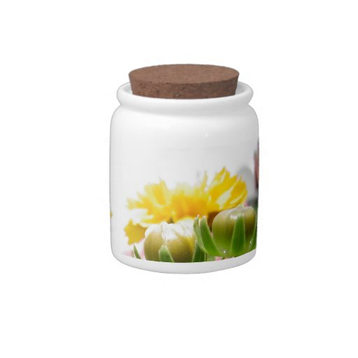Springtime Flowers in Bloom Candy Dishes