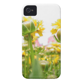 Springtime Flowers in Bloom iPhone 4 Case-Mate Case