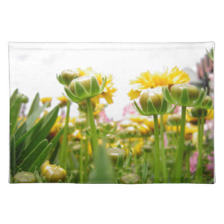 Springtime Flowers in Bloom Place Mat