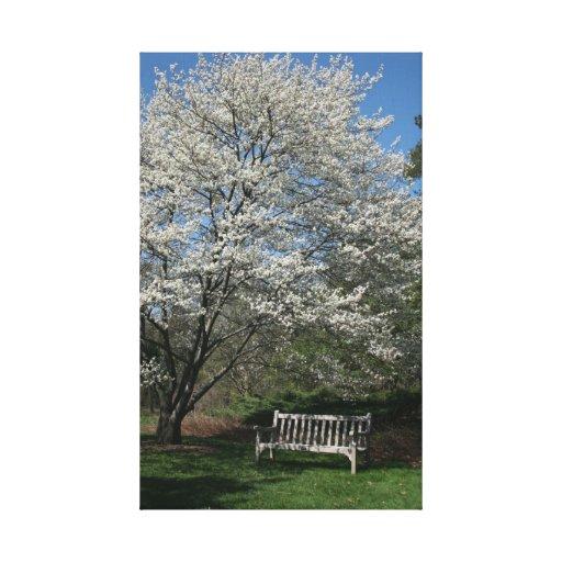 springtime gallery wrap canvas
