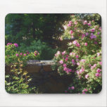 Springtime in New England Mouse Pads