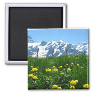 Springtime in the alps 2 inch square magnet