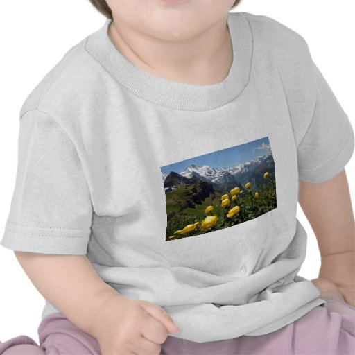 Springtime in the alps shirt