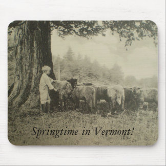 Springtime in Vermont! Mouse Pads