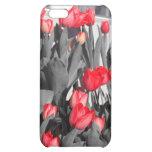 Springtime iPhone 5C Cover