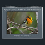 """Springtime Jewels - Warblers Calendar<br><div class=""""desc"""">Warblers are indeed the &quot;springtime jewels&quot; of the birding world and this calendar features but a small selection of some of the species that can be found in Ohio during spring migration which peaks each year in May. All photos were taken in northern Ohio and I hope they bring a...</div>"""