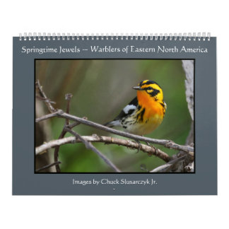 Springtime Jewels - Warblers Calendar