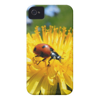Springtime Ladybird on Dandelion iPhone 4 Case-Mate Cases