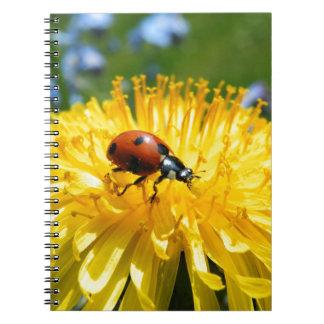 Springtime Ladybird on Dandelion Spiral Notebooks