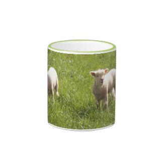 Springtime Ringer Coffee Mug