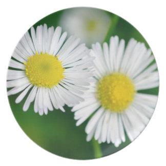 Springtime Plate