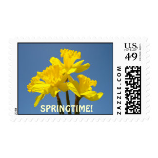 Springtime! postage stamps Daffodil Flowers
