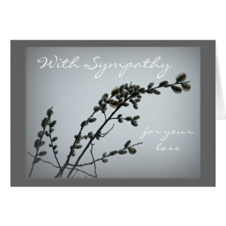 Springtime Pussy Willow Catkins Greeting Cards