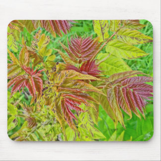 Springtime Smooth Sumac Foliage Mousepad