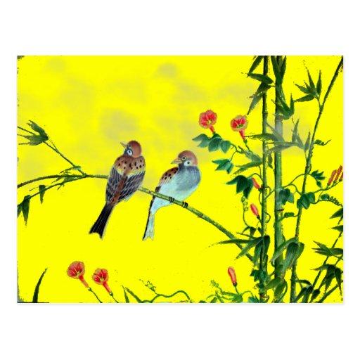 Springtime Sparrows Postcard
