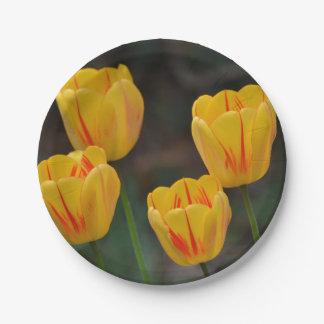 Springtime Tulip Paper Plate