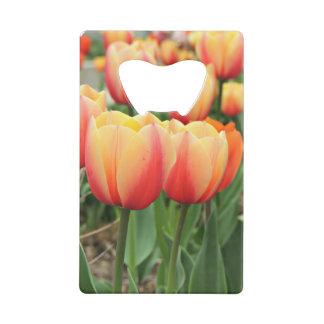Springtime Tulips Credit Card Bottle Opener