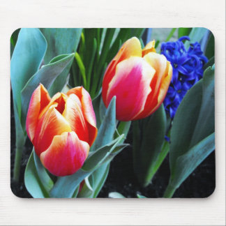 Springtime Tulips Mouse Pad