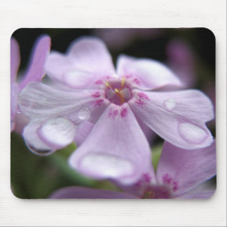 Springtime Waterdrops Mouse Pad