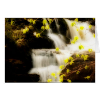Springtime Waterfall Scene in the Poconos Card