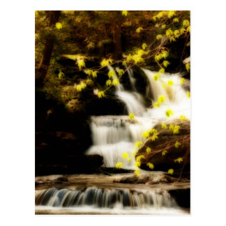 Springtime Waterfall Scene in the Poconos Postcard