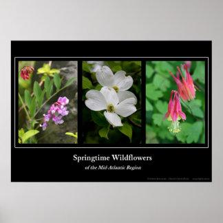 Springtime Wildflowers Print